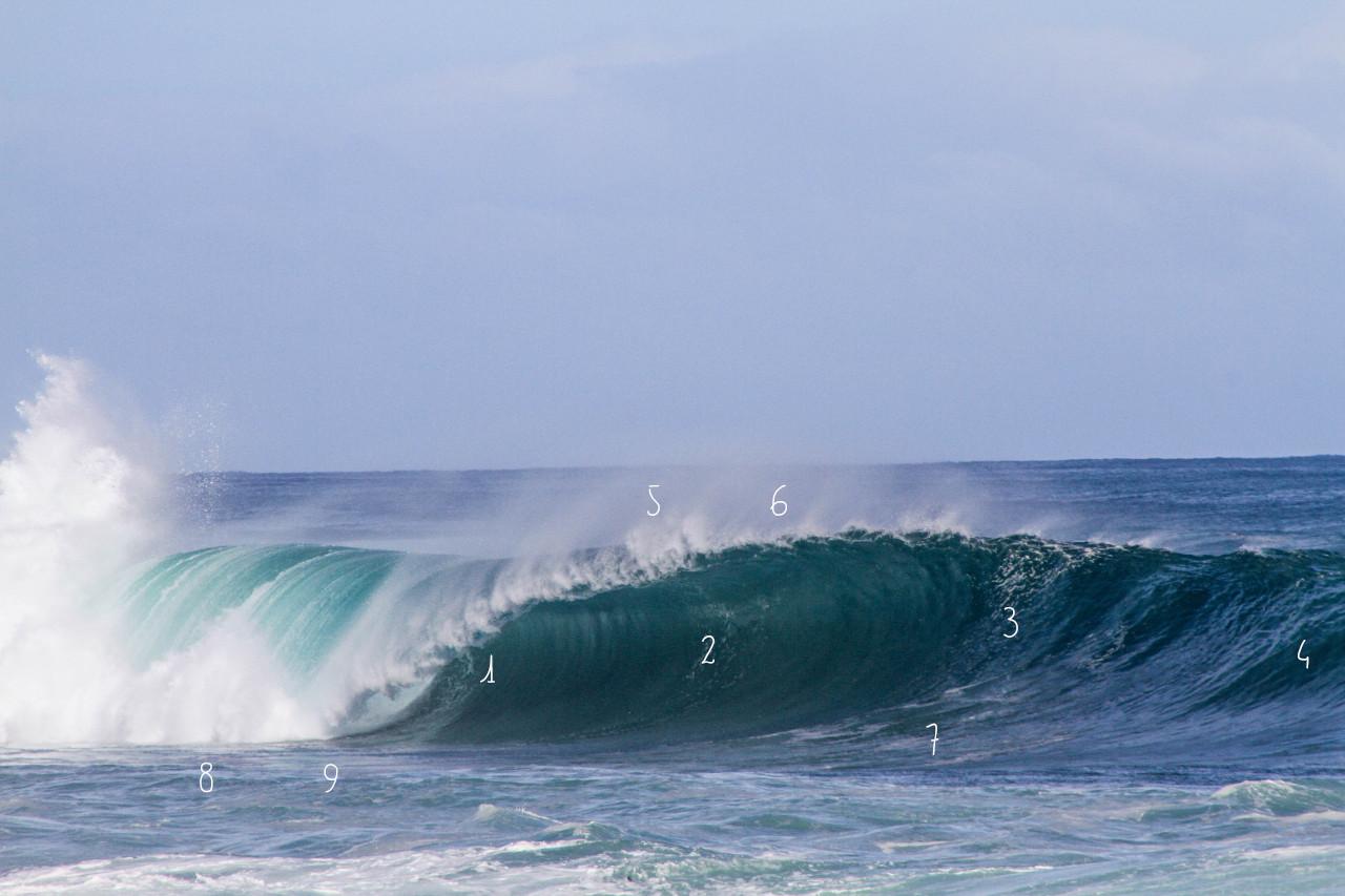 Aufbau einer Welle, Wellenanatomie, Bereiche einer Welle
