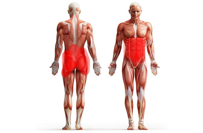 Core Muskeln beim Surfen