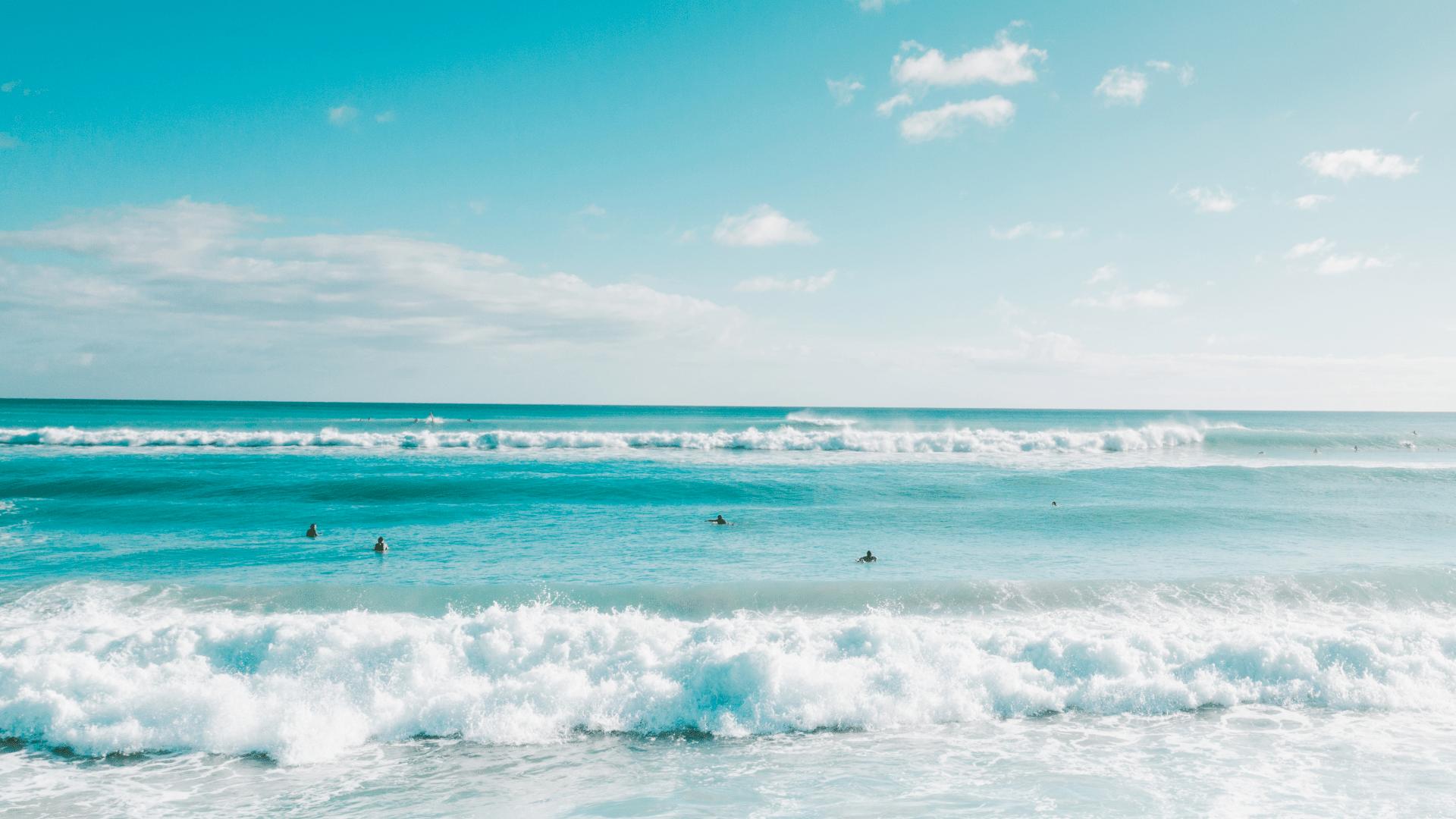 Wissen für Surfer Surfwissen Surf Wissen